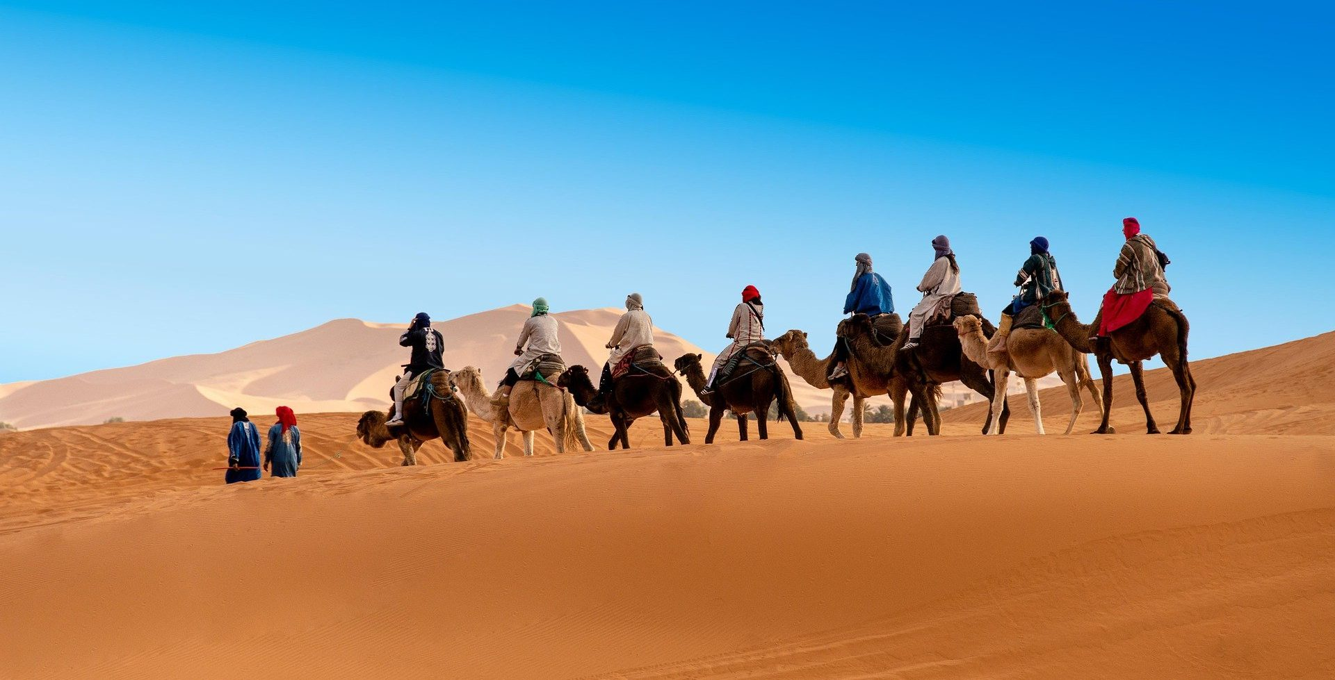 group of tourists in a camel ride to Merzouga dunes